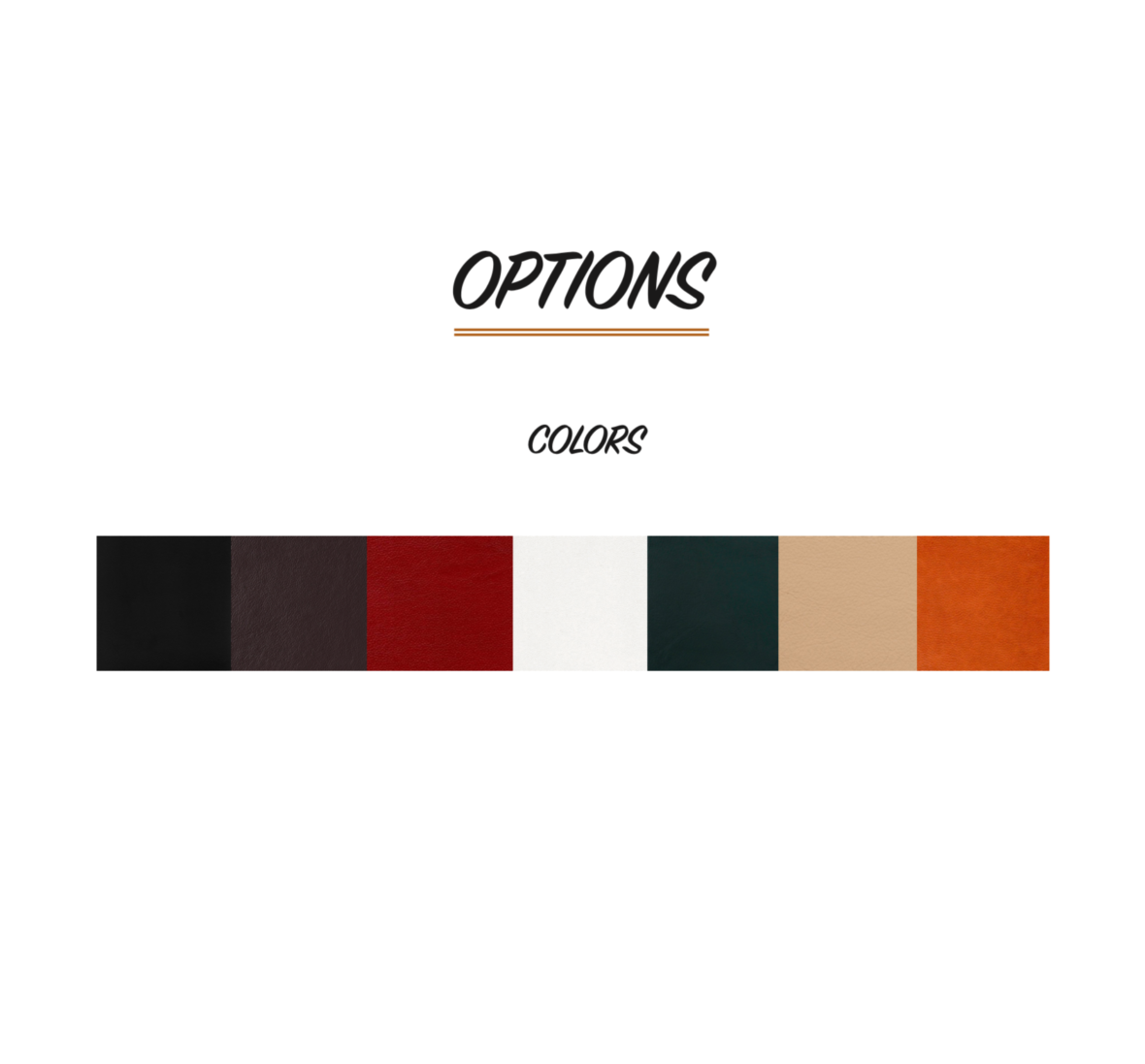 Check Presenter Color Options